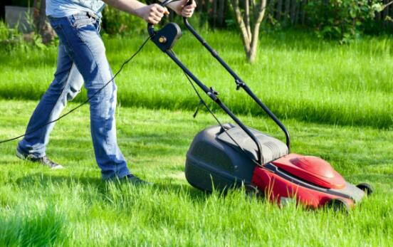 Why to brush cutter mowing mower